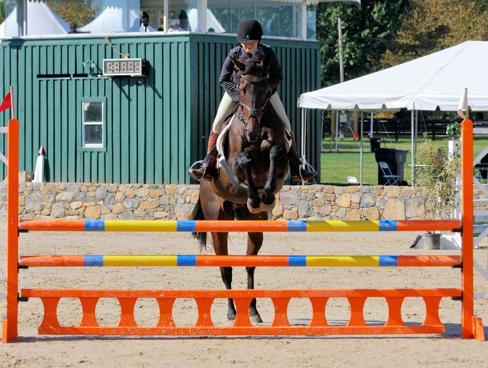 Flatfoot Scotty Upperville